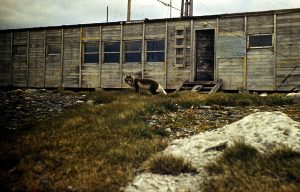 Spitsbergen 70.